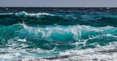 Udržitelnost oceánů